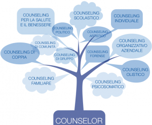 counselor-300x247.png