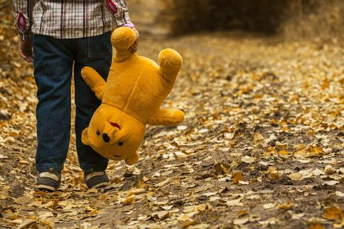 maxpixel.freegreatpicture.com-Bear-Child-Yellow-Boy-Nature-Leaves-Autumn-1051288.jpg